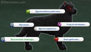 Выученные команды в меню действий у собаки