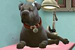 Синдром неуклюжей собаки