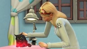 успокаивает кошку