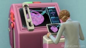 рентген питомца