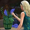 Навык флористики в The Sims 4 Времена года