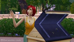 Сим пытается подружится с пчелами