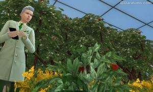 Исследователь пестиков и тычинок