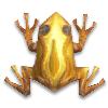 Золотая лягушка с гематитом и волнообразными полосками