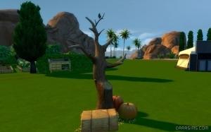 пустое дерево без пугала