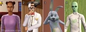 Горожанка, психиатр, социальный кролик, Букет Левкоев