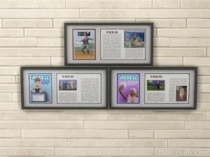 Газетные статьи в рамках в награду за 9 ступень карьеры соцсетей