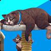 Новости нашей команды: скоро в The Sims 4