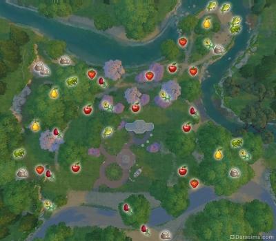 Центральный парк Цветущая магнолия