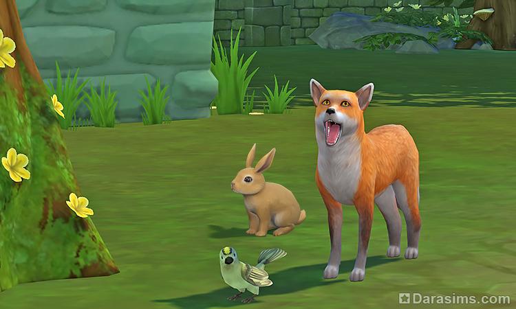 Кролики, лисы и дикие птицы в Симс 4: польза и вред диких животных в дополнении «Загородная жизнь»