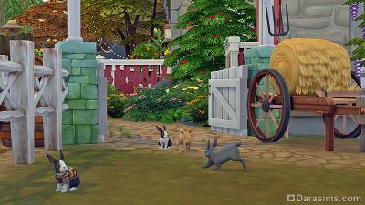 Кролики в Симс 4 Загородная жизнь