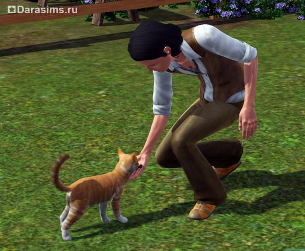 Как в симс 3 кошку и кота сделать парой 162