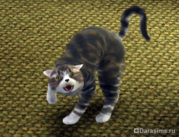 Собаки в The Sims 3 Питомцы (Симс 3 Собаки - Большая) 53