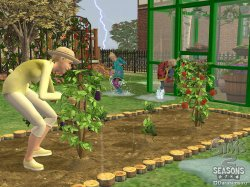 The Sims 2: Seasons (Симс 2: Времена года)