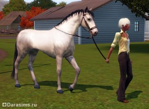 ������ � �The Sims 3 �������