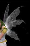 Феи в «Симс 3 Сверхъестественное»