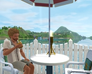 �The Sims 3 ������� �������: �� ����� � �����. ��������� �������