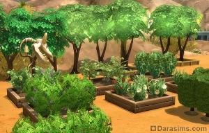 Фруктоновые деревья в Симс 4